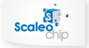 Scaleo Chip