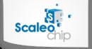Scaleo Chip